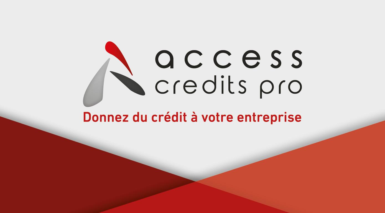 Logo ACCESS CREDITS PRO